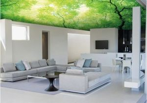 Ceiling Decals Mural Alternative for White Ceiling 3d Ceiling Design Ideas