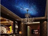 Ceiling Murals Night Sky 58 Best Ceiling Murals Images