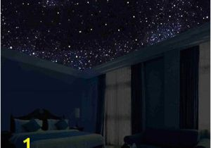 Ceiling Murals Night Sky Glow In the Dark Night Sky Mural Stars Constellations Milky Way 5 Ft