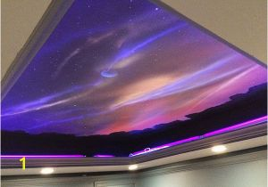 Ceiling Murals Night Sky Widfire Paints On the Ceiling Allows A Mural to Change From Day to
