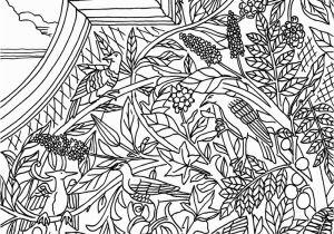 Central Park Coloring Pages Central Park Coloring Pages 5009 1275—1650