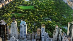 Central Park Wall Mural Mercury Row Bird Eye View Central Park Wall Mural
