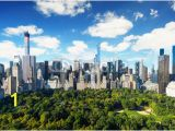 Central Park Wall Mural New York City Central Park View to Manhattan at Sunny Day Wall Mural