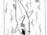 Chad Wild Clay Coloring Pages 36 Best Coloring Images