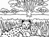 Cheetah Coloring Pages Online 25 Best Cheetah Coloring Pages for Your Little Es
