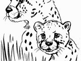 Cheetah Coloring Pages Online Cheetah Coloring Pages Gallery thephotosync