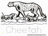 Cheetah Coloring Pages Online Coloring Pages Of Baby Cheetahs A K Bfo