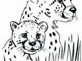 Cheetah Coloring Pages Online Leopard Print Coloring Pages Cheetah Printable Me Animal to for