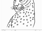 Cheetah Running Coloring Pages Cheetah S Can Run Fast Worksheet Twisty Noodle