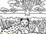Chester Cheetah Coloring Pages 657 Best Cheetahlish Images