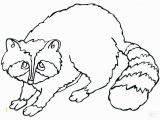 Chester Raccoon and the Big Bad Bully Coloring Pages Raccoon Coloring Sheet Raccoon Coloring Page Raccoon Coloring Page