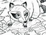 Chester Raccoon and the Big Bad Bully Coloring Pages Raccoon Coloring Sheet Raccoon Coloring Pages to Print Free Coloring