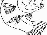 Chinook Salmon Coloring Page 20 New Chinook Salmon Coloring Page
