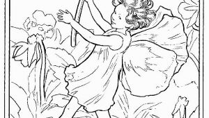Cicely Mary Barker Flower Fairies Coloring Pages 244 Best Images About Cicely Mary Barker On Pinterest