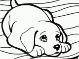 Clifford Thanksgiving Coloring Pages 13 Elegant Clifford Thanksgiving Coloring Pages S