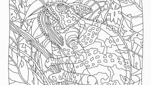 Color by Number Animal Coloring Pages Hidden Predators Coloring Book Mindware