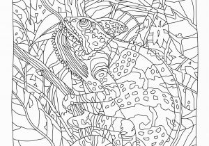Color by Number Cat Coloring Pages Hidden Predators Coloring Book Mindware