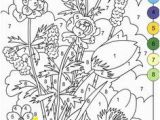 Color by Number Flower Coloring Pages 127 Best Coloring Pages Images