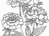 Color by Number Flower Coloring Pages Peony Flower Coloring Pages
