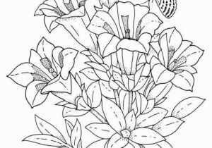 Color Pages for Adults Flowers How to Draw Flowers Step by Step Simple Flower Coloring Pages Lovely