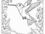 Colorado State Bird Coloring Page Coloring Pages Hummingbirds