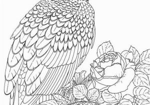 Colorado State Bird Coloring Page Eagles Lions Of the Sky Coloring Pages Birds