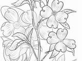 Coloring Page Of A Plant Flowering Dogwood Coloring Page