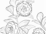 Coloring Page Of A Plant Japanese Camellia Coloring Page