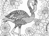 Coloring Page Of Flamingo Birds Coloring Pages for Adults