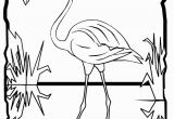 Coloring Page Of Flamingo Flamingo Coloring Page