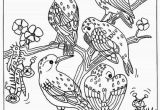 Coloring Pages Birds Flying 25 Birds Coloring Pages for Kids