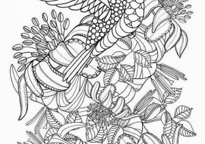 Coloring Pages Birds Flying Hummingbird Printable Coloring Pages Digital Of Beautiful