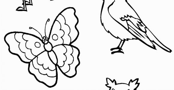 Coloring Pages Birds Flying I Am Thankful for Birds and Insects Coloring Page