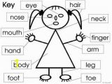 Coloring Pages Face Parts Parts Of the Body and Face Posters and Worksheets