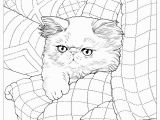 Coloring Pages for A Quilt Bluecat Gallery Adult Coloring Books by Jason Hamilton