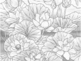 Coloring Pages for Adults Flowers Nature Printable Adult Coloring Pages From Favoreads with