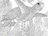 Coloring Pages for High School Students Pdf Coloring Pages for Adults Sea Turtle Adult Coloring Pages
