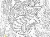 Coloring Pages for Intermediate Students Die 51 Besten Bilder Zu Mandala In 2020