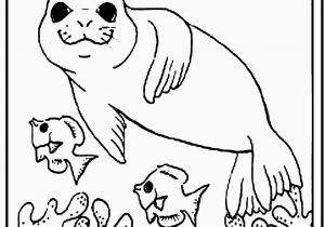 Coloring Pages for Kids Animals Step by Step Drawing Book Series Animals In 2020