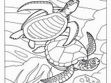 Coloring Pages for Ocean Animals Unique Coloring Pages Fish for Adults Picolour