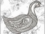Coloring Pages for Older Kids Duck Floral Background Coloring Book for Adult and Older