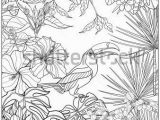 Coloring Pages for Older Kids Tropical Wild Birds and Plants Tropical Garden Collection