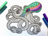 Coloring Pages for Sharpies Octopus Pdf Zentangle Coloring Page Coloring Pages