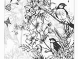 Coloring Pages for Spring Flowers Beautiful Flowers Detailed Floral Designs Coloring Book