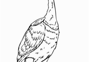 Coloring Pages for Up Movie Beautiful Disney Up Character Kevin the Bird Coloring Page