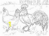 Coloring Pages Free Printable Rooster Chicken or Rooster Colouring In Google Search In 2020