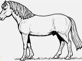 Coloring Pages Horses Pferde Ausmalbilder Beispielbilder Färben Christmas Coloring Pages