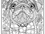Coloring Pages Of Baby Pugs Pugs Coloring Pages Pug Coloring Pages Unique Pug Tangle Zentangle