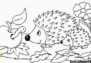 Coloring Pages Of Cartoon Flowers 10 Best Ausmalbilder Herbst 14 Ausmalbilder Herbst Igel