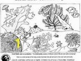 Coloring Pages Of Coral Reefs 256 Best Kids Coloring Pages Images On Pinterest